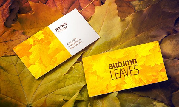Autumn Leaves Business Card Mockup