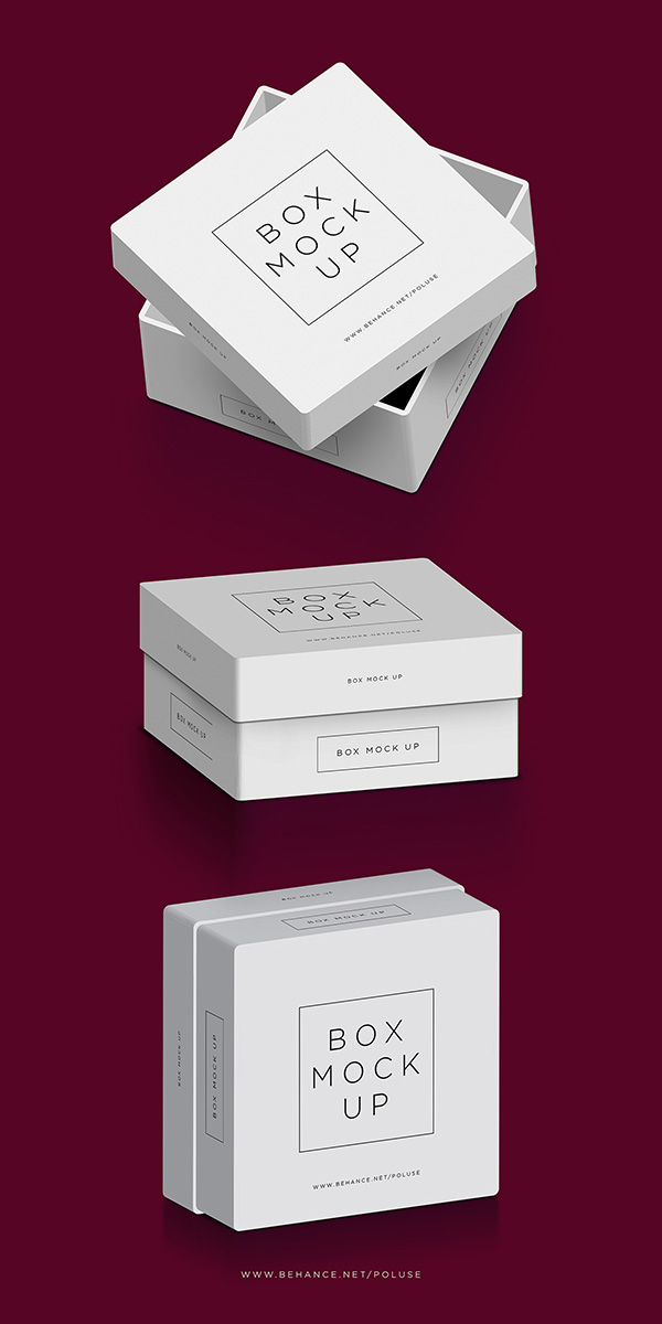 Box Mock Up Free