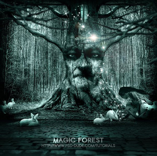 Lost Princess In The Magic Forest