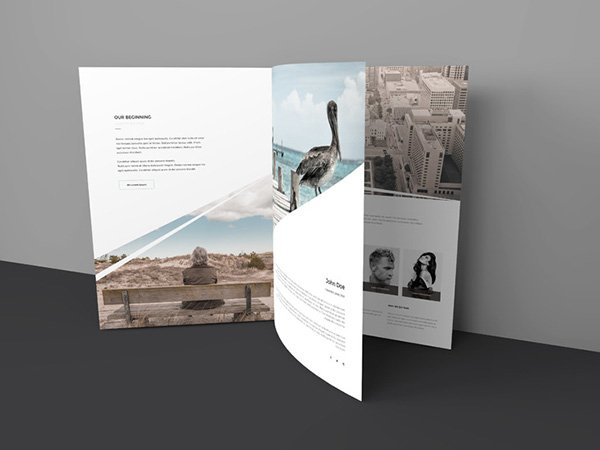 Three Page Free Brochure Mock-up