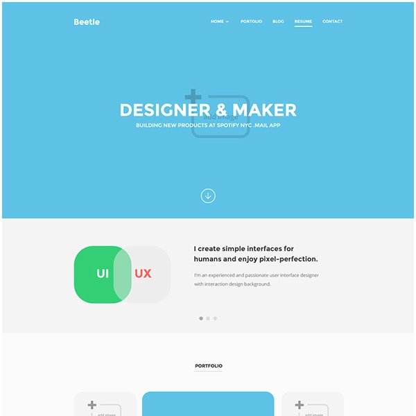 Beetle Resume PSD Template