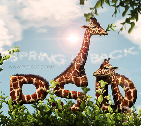 Create A Giraffe Leather And Fur Typography In Photoshop