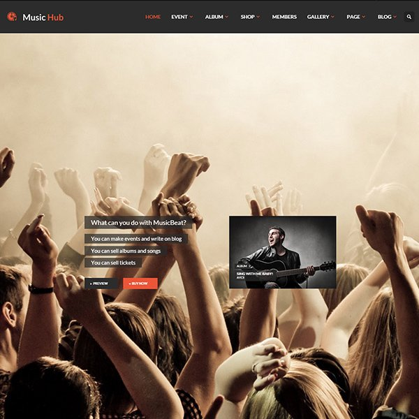 MusicHub - Music/Band/Club/Party WordPress Theme