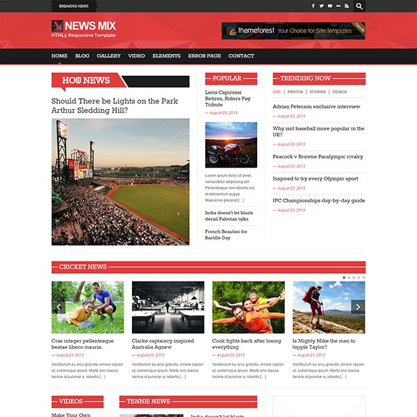 News Mix Magazine WordPress Theme (light version)