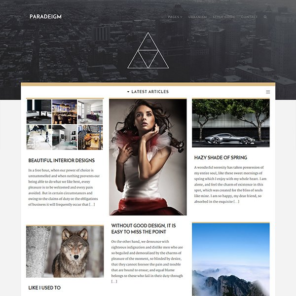 Paradeigm - WordPress Theme