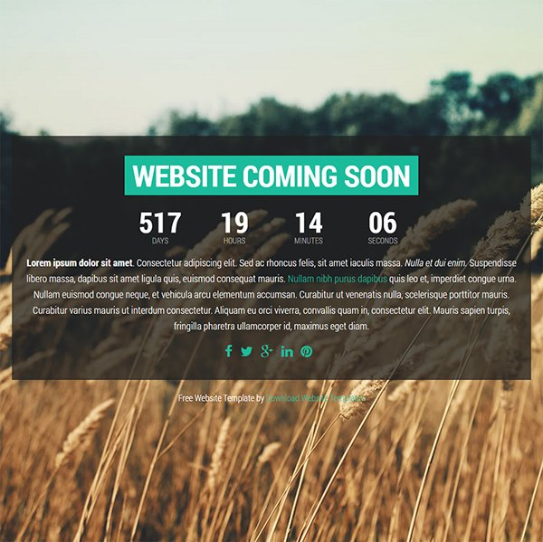 Magnitude - Free Coming Soon Templates