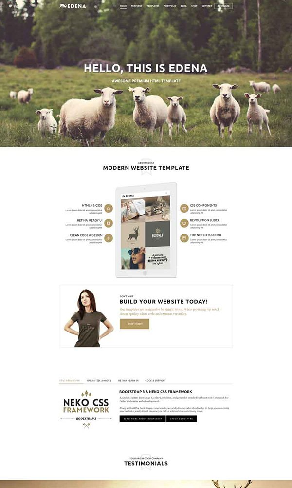 Free PSD Edena Website Template