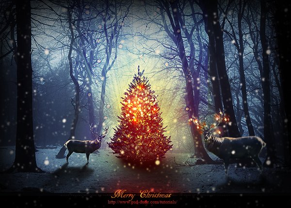 Magic Christmas Tree Photoshop Manipulation Tutorial