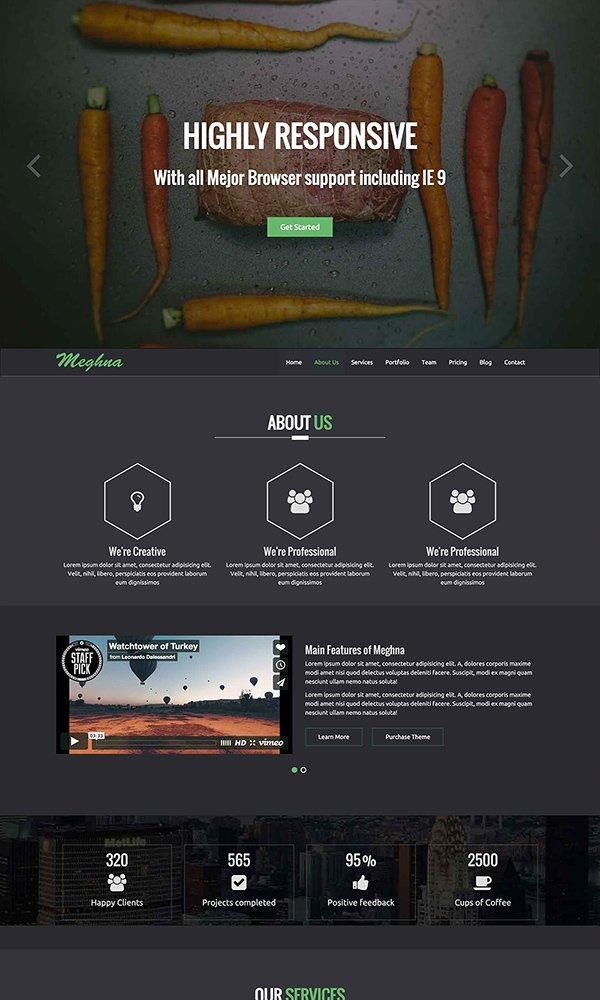 Meghna Onapage Business Template
