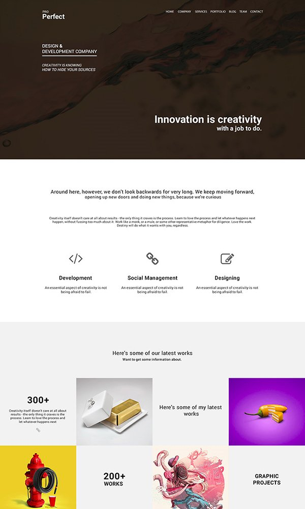 ProPerfect – Multipurpose One Page Psd Template