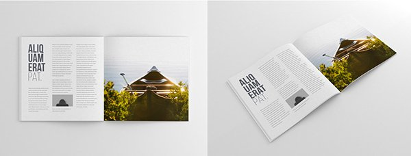 75+ Free PSD Magazine, Book, Cover & Brochure Mock-ups - Page 3 of 3